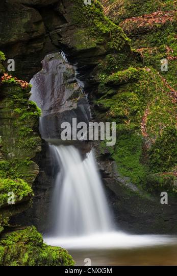 St Nectan's Kieve waterfall in St Nectans Glen, Tintagel, Cornwall, England. Spring (April) 2012. - Stock-Bilder