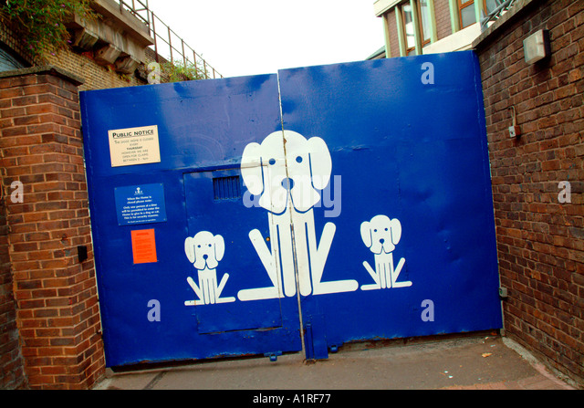 Battersea Dogs Home Application