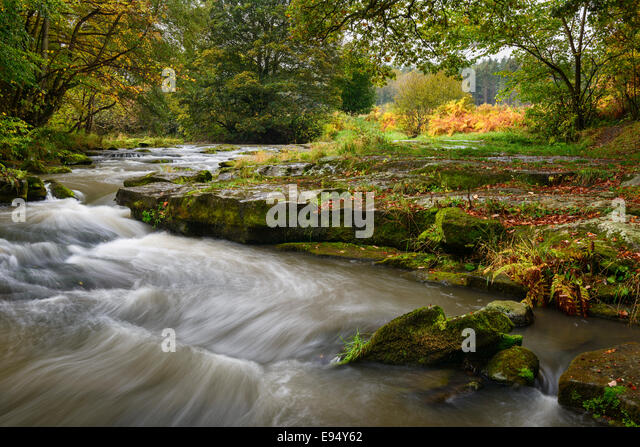 River Derwent near Shotley Grove in 'Shotley Bridge' - Stock-Bilder