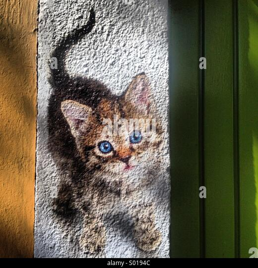 An advertising with the image of a kitten decorates a pets shop in Colonia Roma, Mexico City, Mexico - Stock Image