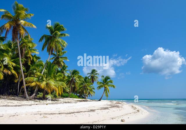 Saona Island, Dominican Republic, Caribbean - Stock Image