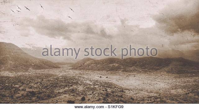 the Countryside - Stock Image
