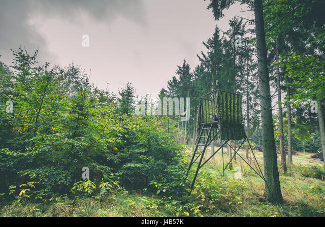 Hunting tower in green camoflage in a forest - Stock Image