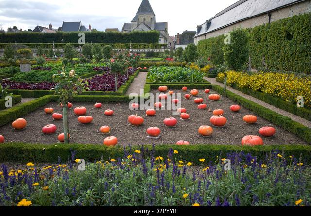 Vegetable garden, Chateau de Villandry, UNESCO World Heritage Site, Indre-et-Loire, Touraine, Loire Valley, France, - Stock Image