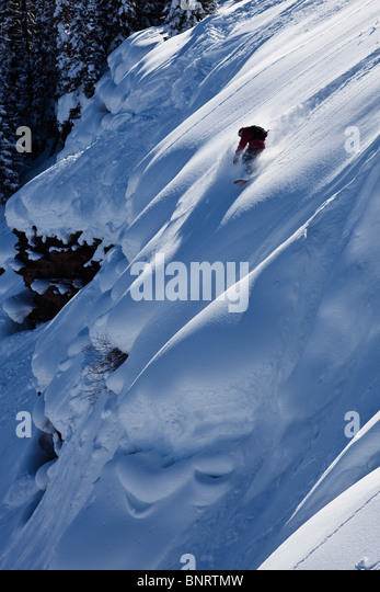 A snowboarder rips untracked powder turns in Colorado. - Stock Image