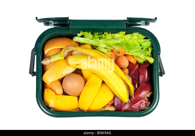 Food waste for composting in domestic recycling waste bin - Stock Image