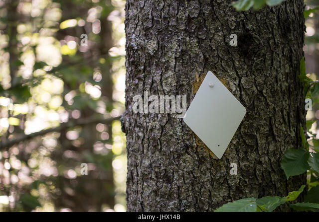Diamond Trail Blaze on Tree marks the direction for hikers - Stock Image