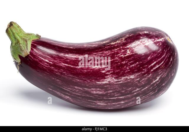Single whole purple Aubergine on white background - Stock Image