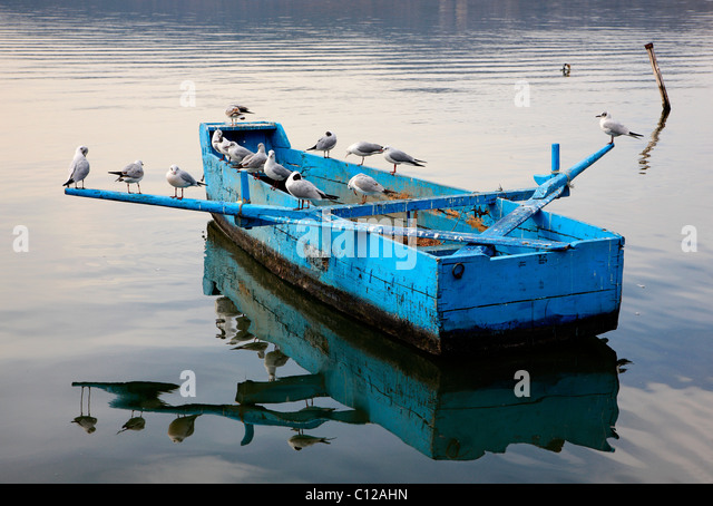 A peaceful moment in Lake Orestias (or 'Orestiada') with birds resting on a 'plava' (traditional - Stock Image