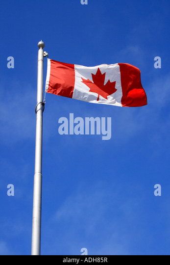 Canadian Flag. Photo by Willy Matheisl - Stock Image