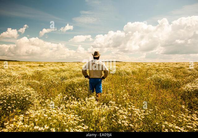 Man on field of wild flowers, Sarsy village, Sverdlovsk region, Russia - Stock Image