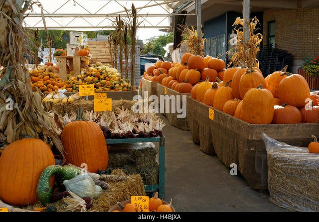 Pumpkins and squash for sale at the Jean Talon Market, Montreal Quebec, Canada - Stock Image