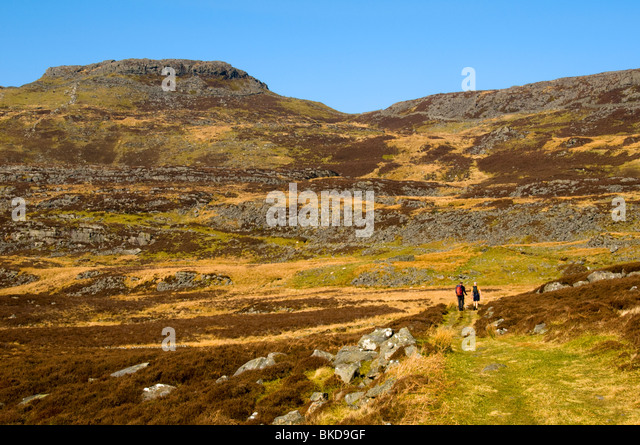 Foel Renolau in the north of the Rhinog Mountains, Snowdonia, North Wales, UK - Stock Image
