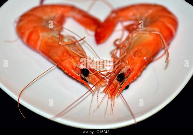Love Shellfish! - Stock Image