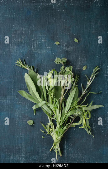 Bundle of fresh Italian herbs rosemary, oregano and sage over dark blue shabby background. Top view with copy space - Stock Image