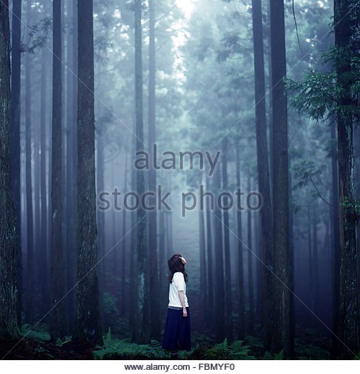 Young Woman In Foggy Forest - Stock Image