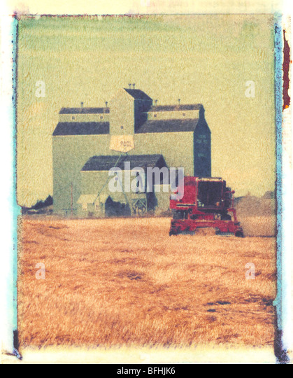 Harvesting with combine, Morinville, Alberta. (artistic Polaroid transfer technique) - Stock Image