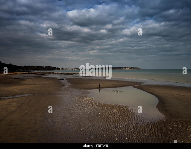 Taking the dog for a swim on the sandy beach between Shanklin and Sandown on the Isle of Wight - Stock Image