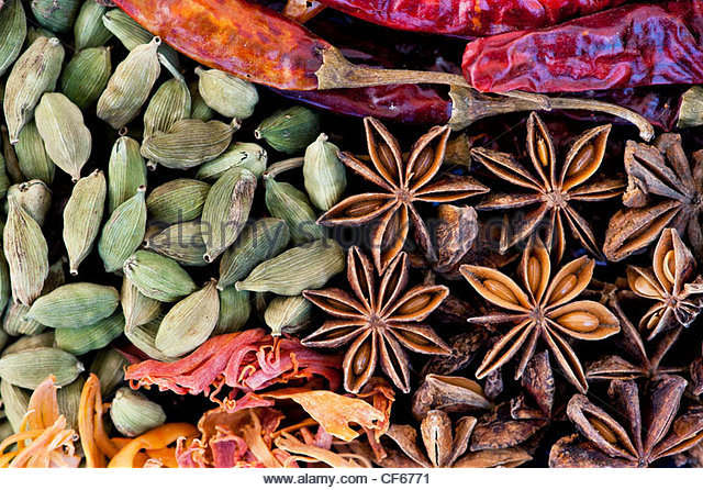 Indian cooking spices pattern - Stock-Bilder