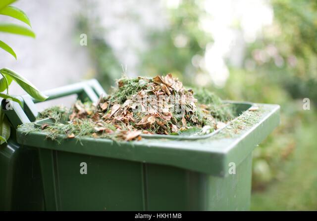 garden waste in recycle bin. garbage, rubbish, bin, grass. - Stock Image