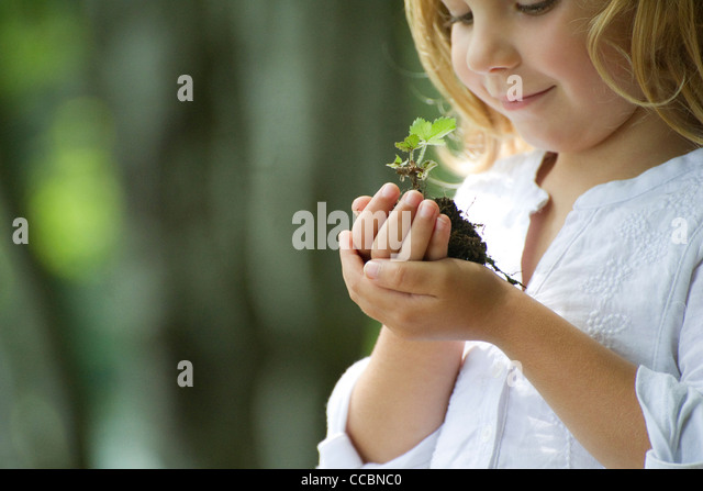 Girl holding seedling - Stock Image