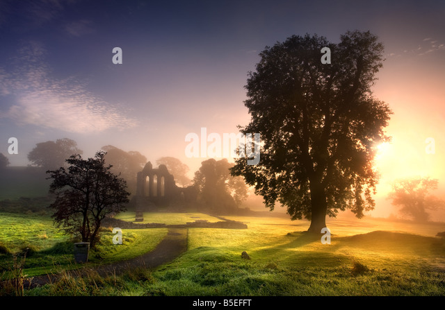 Inch Abbey, Downpatrick - Stock Image