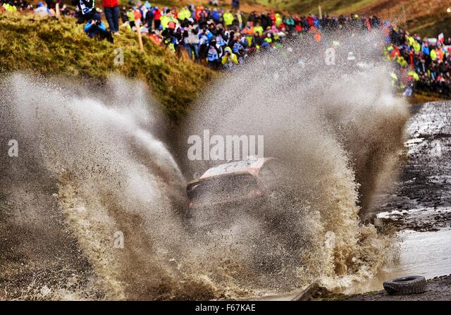 Hafren to Myherlin, Wales, UK. 13th November, 2015. WRC Rally of Great Britain starts with stages 1-6. Martin Prokop - Stock Image