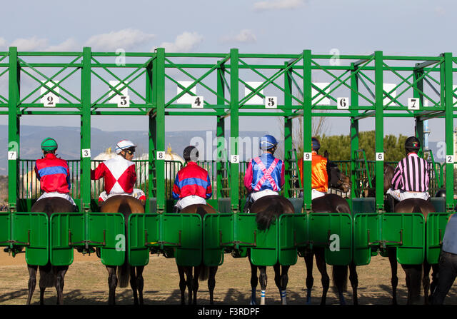 Jockeys in the start line during a competition - Stock Image