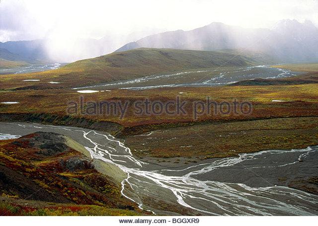 Alaska. Denali NP. Polychrome Pass. Braided Toklat River. - Stock Image