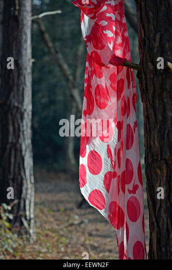 red scarf hanging on tree - Stock Image