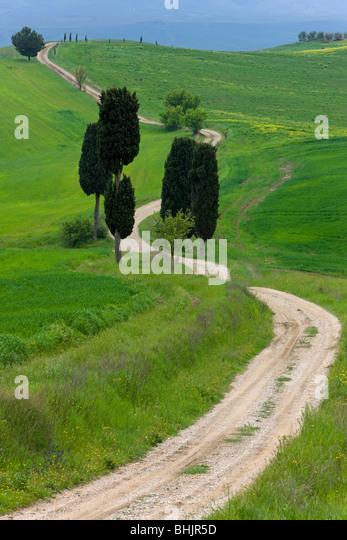 Italy, Tuscany, Near pienza winding road in landscape - Stock Image