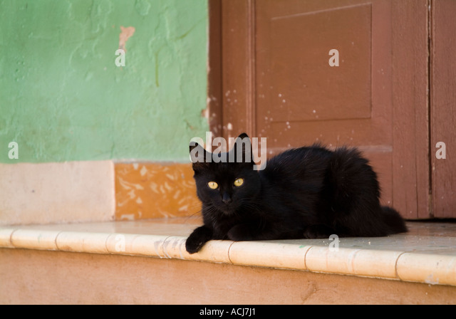 Black cat lying on a doorstep in Trinidad, Cuba. - Stock Image