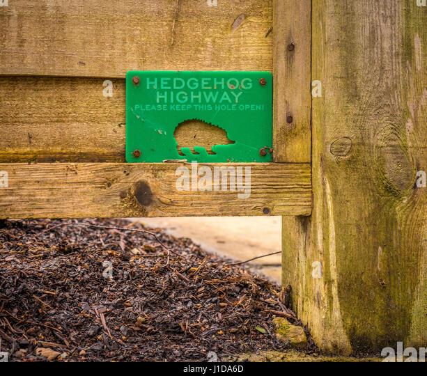 Fence Hole Stock Photos Amp Fence Hole Stock Images Alamy