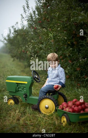 Boy On Tractor : Toy tractor stock photos images alamy