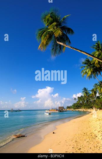 Tobago Pigeon Point heritage park iconic island symbol signature site landmark peninsula white sand beach - Stock Image