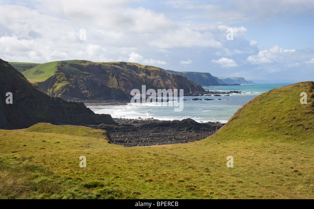 View towards Swansford Hill Lower Sharpnose to Harscott High Cliff along Devon & North Cornish Coast  from St - Stock Image