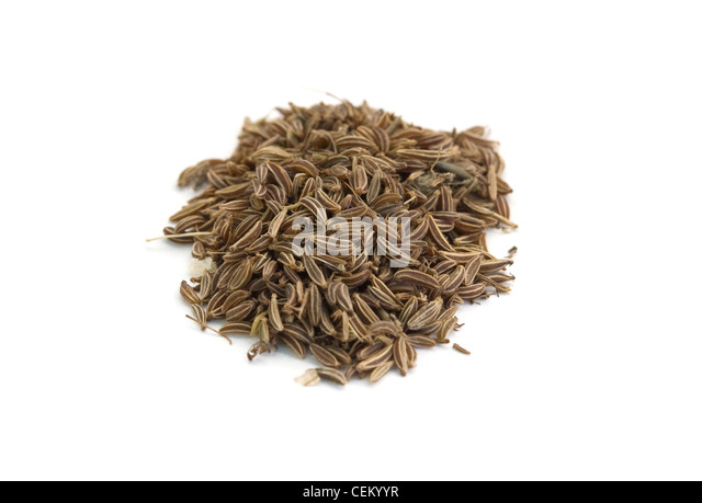 seed of dill are isolated on white background - Stock Image