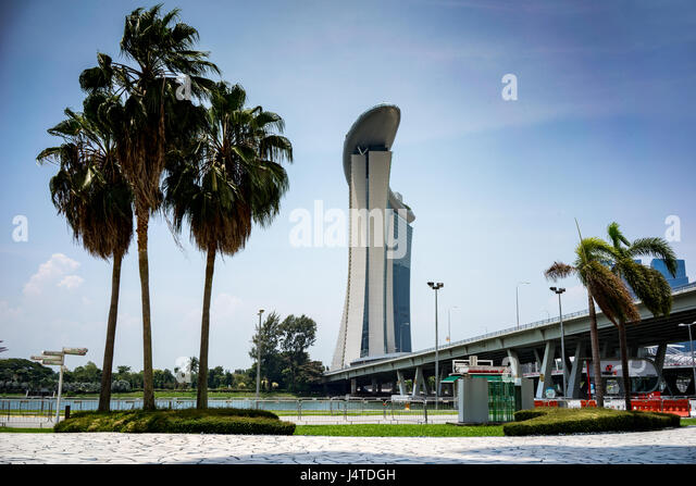 Palm trees in front of the Marina Bay Sands hotel in Singapore - Stock-Bilder