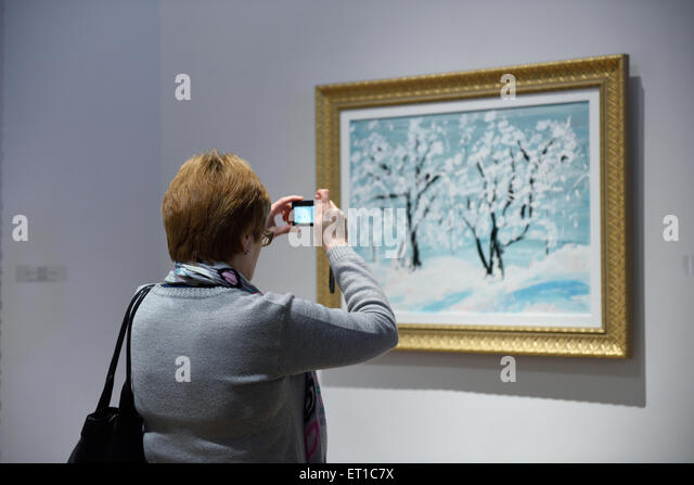 St. Petersburg, Russia, 10th June, 2015. Visitor makes photo during the presentation of the exhibition of Antonio - Stock Image