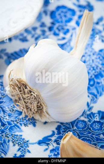 A Close Up View of a Garlic Bulb on Blue Fabric - Stock Image