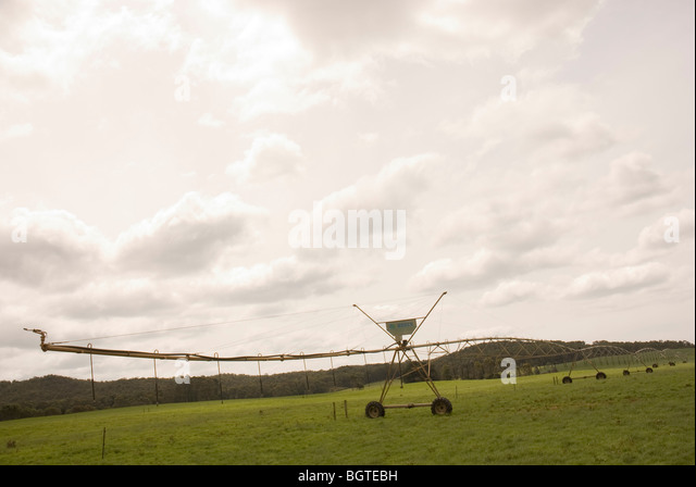 Irrigating irrigation agriculture agricultural stock photos and images