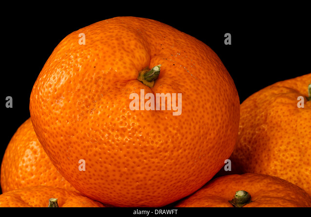 Fresh Mandarin Orange - Stock Image
