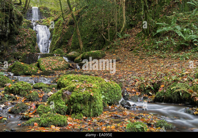 Clampitt Falls part of the Canonteign Falls Waterfall system in autumn near Chudleigh, Dartmoor National Park,  - Stock-Bilder