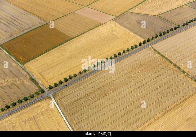 Wheat farmland aerial stock photos wheat farmland aerial for Av diagonal 434