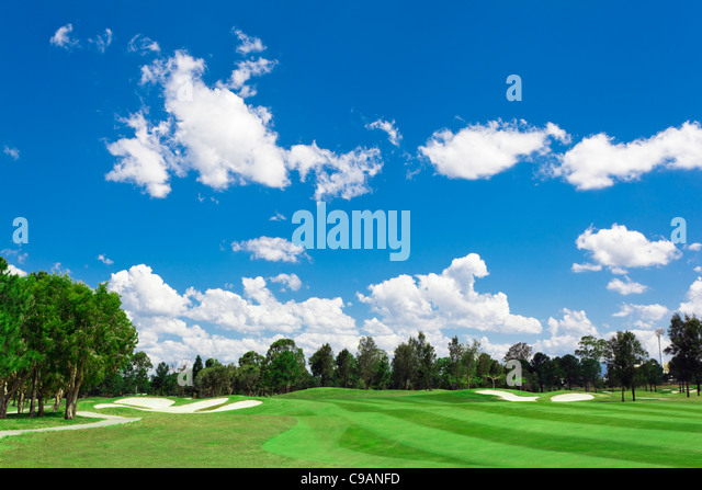 Sunny golf green with scattered clouds on a blue sky and forest - Stock Image