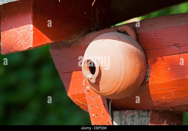 clay nesting box , Germany - Stock Image