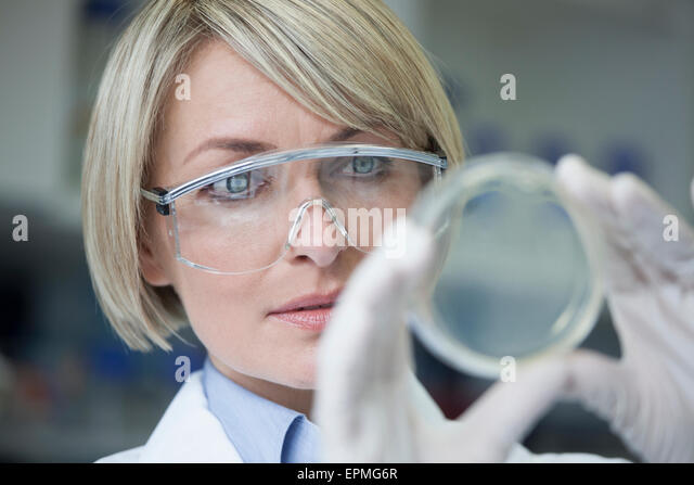 Scientist with petri dish in laboratory - Stock Image