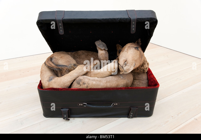Contemporary art at the Saatchi Gallery, London, England, UK - Stock Image