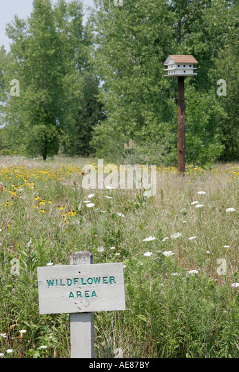 Toledo Ohio Oregon Maumee Bay State Park sign wildflower area birdhouse - Stock Image