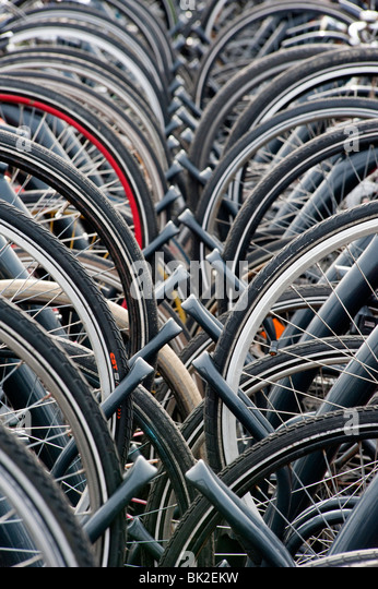 Many bicycles parked in public park in The Netherlands - Stock Image